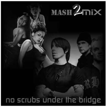 no-scrubs-under-the-bridge1